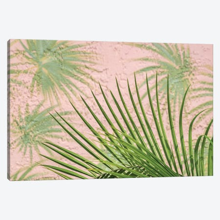 Areca palm in front of painter palm mural, USA Canvas Print #LEN13} by Lisa S. Engelbrecht Canvas Print