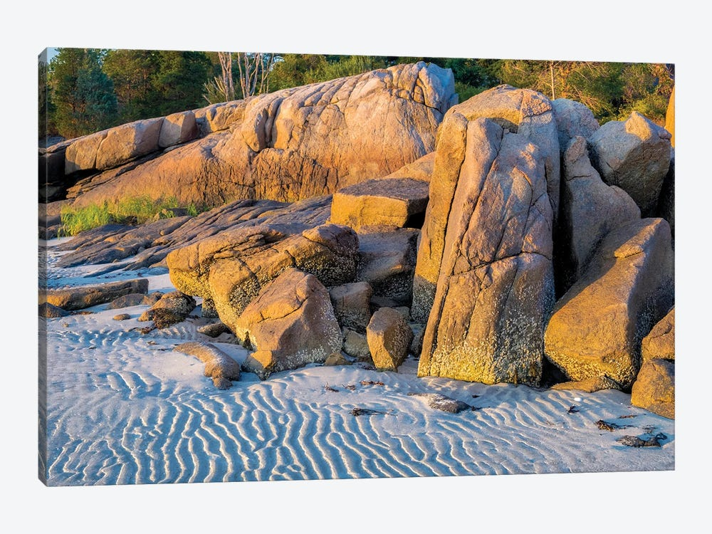 Lighthouse Beach, Annisquam, Gloucester, Massachusetts, USA. by Lisa S. Engelbrecht 1-piece Canvas Art Print