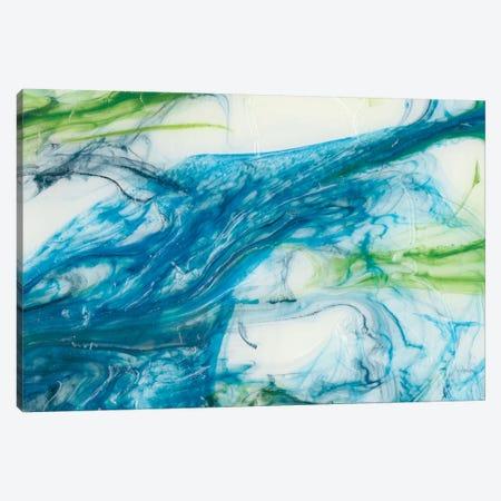 Tidal Sweep III Canvas Print #LER12} by Sharon Chandler Canvas Art Print