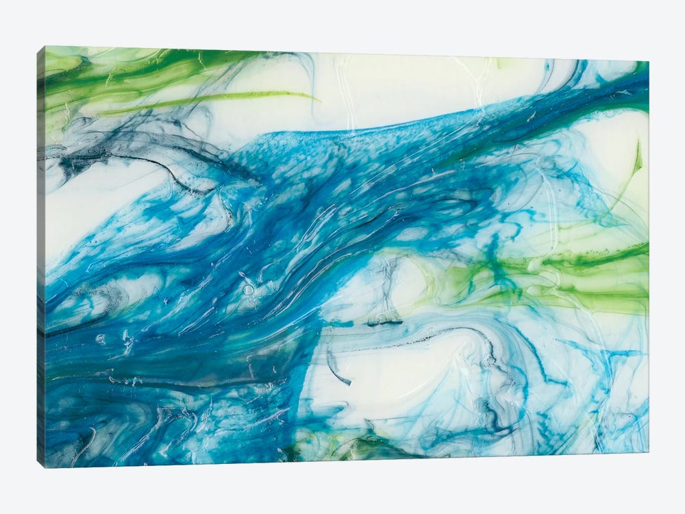 Tidal Sweep III by Sharon Chandler 1-piece Canvas Print