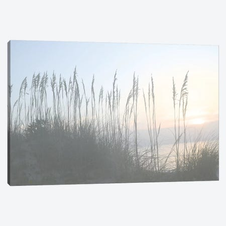 Morning Whisper I Canvas Print #LER17} by Sharon Chandler Canvas Wall Art