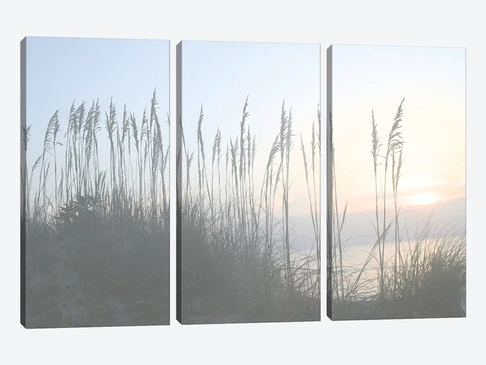Morning Whisper I by Sharon Chandler 3-piece Canvas Art