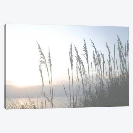 Morning Whisper II Canvas Print #LER18} by Sharon Chandler Art Print