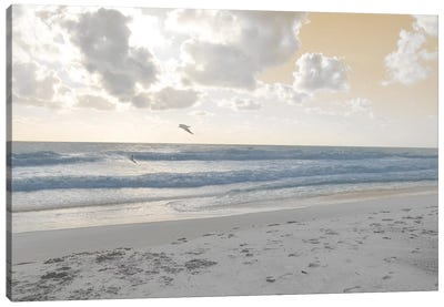 Serene Sea I Canvas Art Print