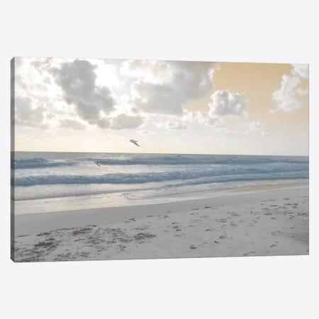 Serene Sea I Canvas Print #LER33} by Sharon Chandler Canvas Art Print