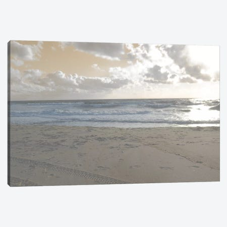 Serene Sea II Canvas Print #LER34} by Sharon Chandler Canvas Wall Art