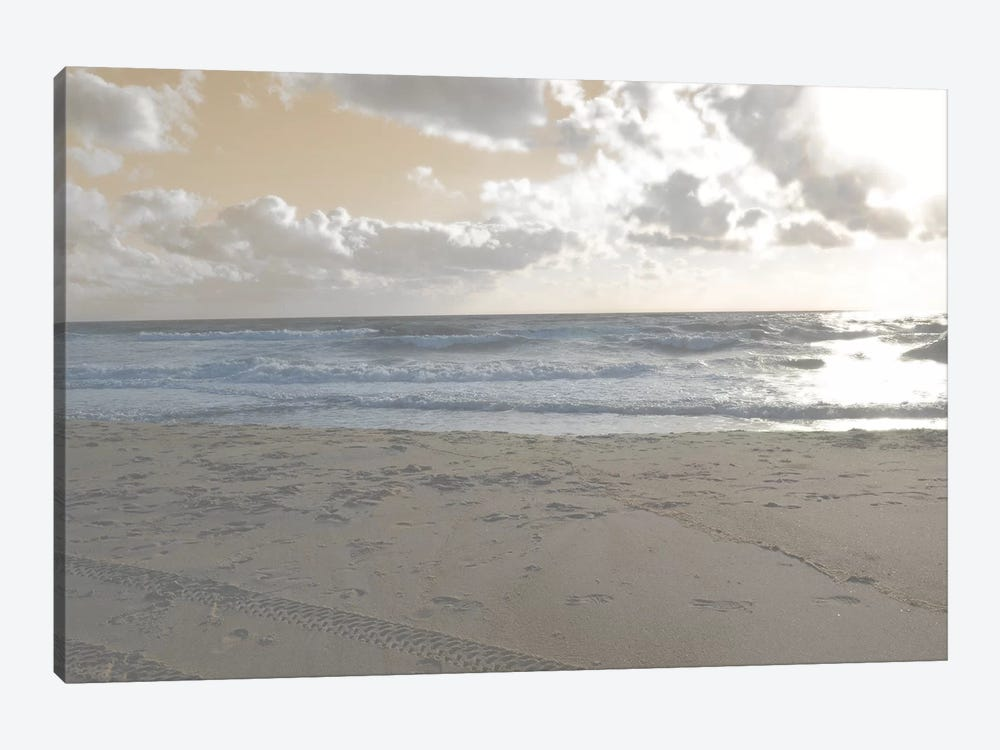 Serene Sea II by Sharon Chandler 1-piece Canvas Print