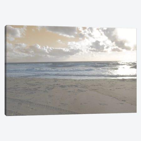 Serene Sea II Canvas Print #LER34} by Sharon Chandler Canvas Wall Art