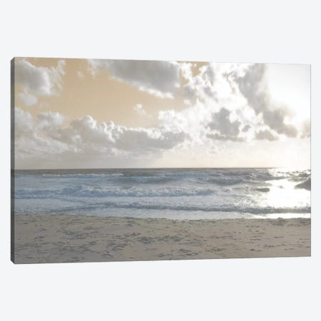 Serene Sea III Canvas Print #LER35} by Sharon Chandler Canvas Artwork