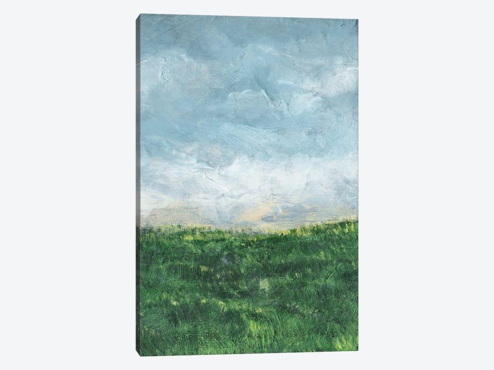 Verdant Fields II by Sharon Chandler 1-piece Canvas Wall Art
