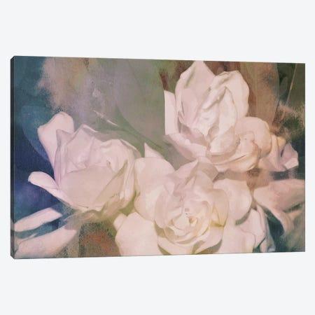 Blush Gardenia Beauty II 3-Piece Canvas #LER83} by Sharon Chandler Canvas Artwork
