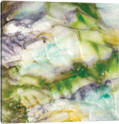 Tidal Spring II Canvas Art Print