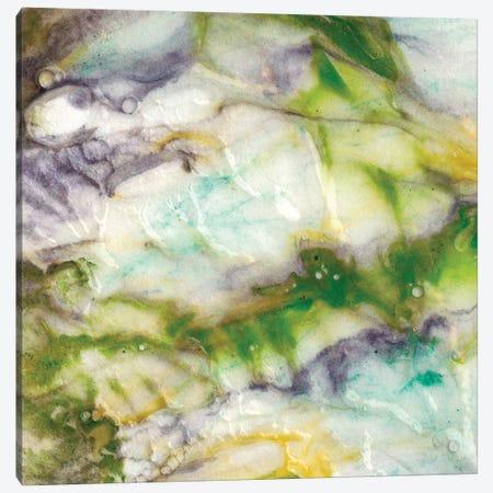 Tidal Spring II Canvas Print #LER87} by Sharon Chandler Canvas Print