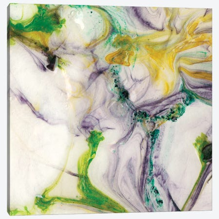 Tidal Spring IV Canvas Print #LER89} by Sharon Chandler Canvas Artwork