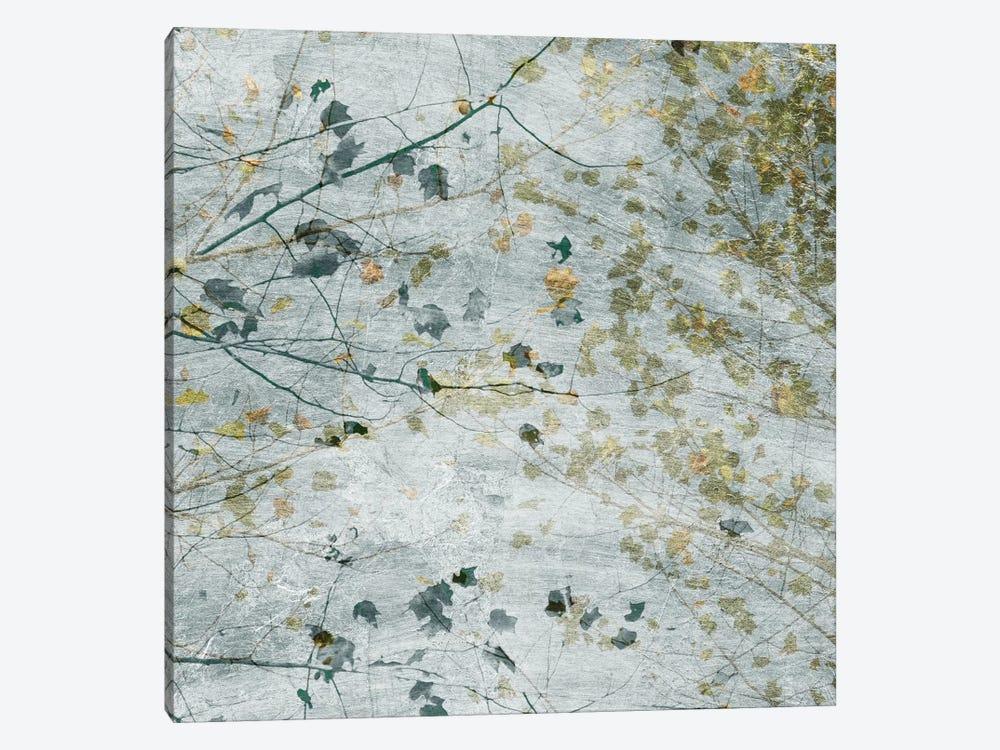 Seasonal Transition I by Sharon Chandler 1-piece Art Print