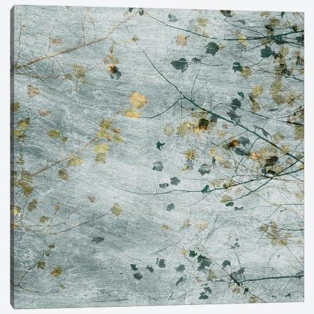 Seasonal Transition III Canvas Print #LER96} by Sharon Chandler Canvas Wall Art