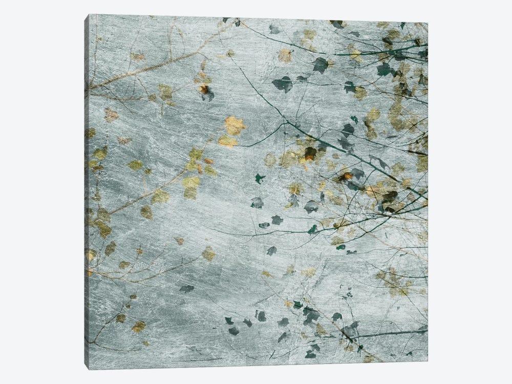 Seasonal Transition III by Sharon Chandler 1-piece Canvas Art Print