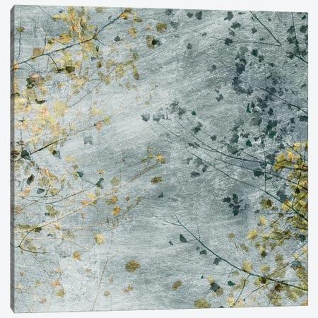 Seasonal Transition IV Canvas Print #LER97} by Sharon Chandler Canvas Artwork