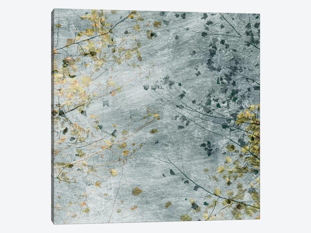 Seasonal Transition IV by Sharon Chandler 1-piece Canvas Art
