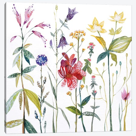 Meadows I Canvas Print #LES122} by Lesia Binkin Canvas Artwork
