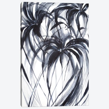 Palms Canvas Print #LES127} by Lesia Binkin Canvas Print