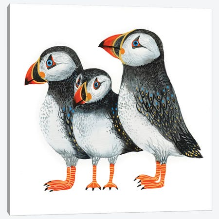 Puffins Canvas Print #LES128} by Lesia Binkin Canvas Artwork