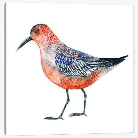 Red Bird Canvas Print #LES132} by Lesia Binkin Canvas Art Print