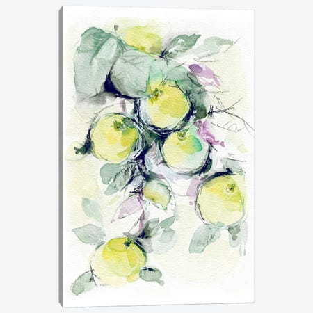 Golden Apples Canvas Print #LES43} by Lesia Binkin Art Print