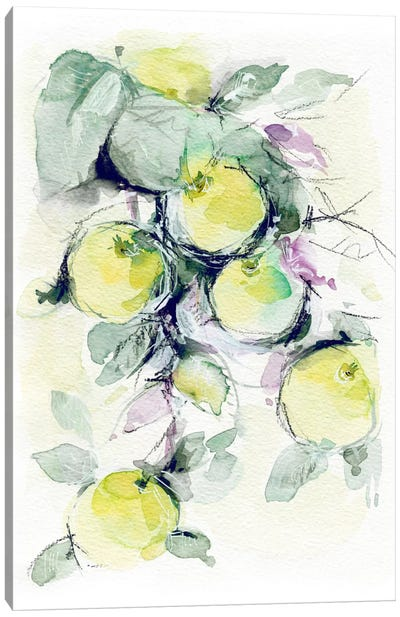 Golden Apples Canvas Print #LES43