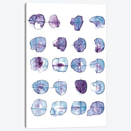 Clouds Canvas Print #LES5} by Lesia Binkin Art Print