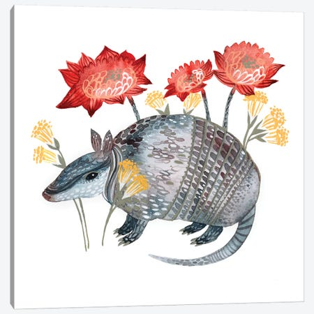 Armadillo Canvas Print #LES95} by Lesia Binkin Canvas Print