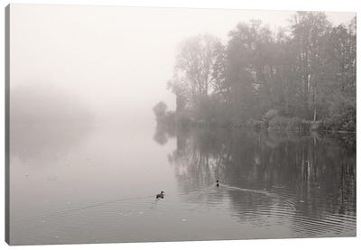 River In Mist Canvas Art Print