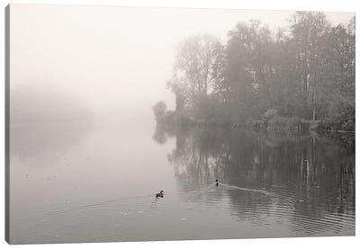 River In Mist Canvas Art Print