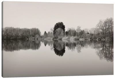 The Mirror Canvas Art Print