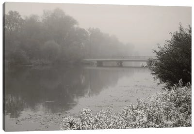 Foggy Morning Canvas Art Print