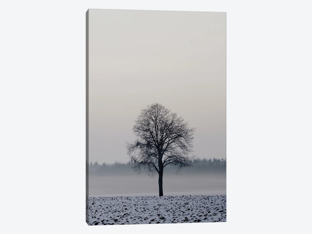 Winter Tree by Lena Weisbek 1-piece Canvas Print
