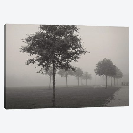 In The Fog Canvas Print #LEW109} by Lena Weisbek Canvas Print