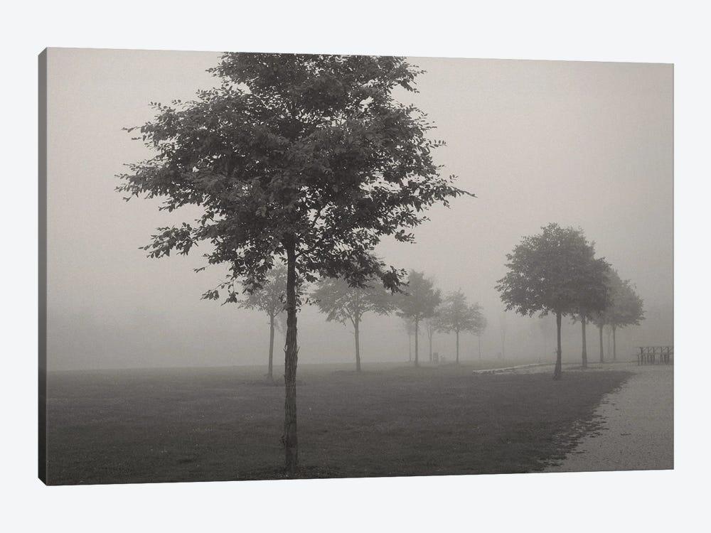 In The Fog by Lena Weisbek 1-piece Canvas Wall Art