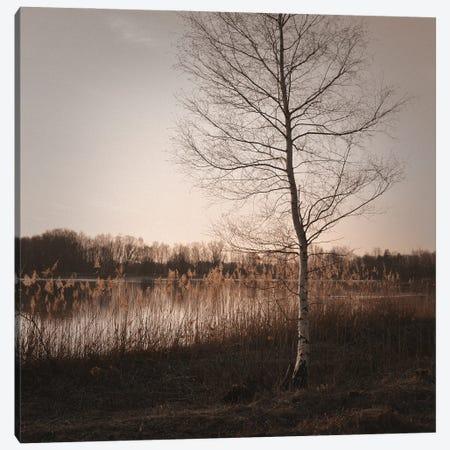 Autumn Time Canvas Print #LEW112} by Lena Weisbek Canvas Art