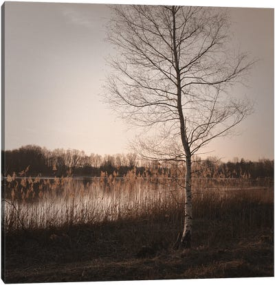 Autumn Time Canvas Art Print