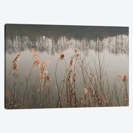 Between Reed And Water Canvas Print #LEW113} by Lena Weisbek Canvas Artwork