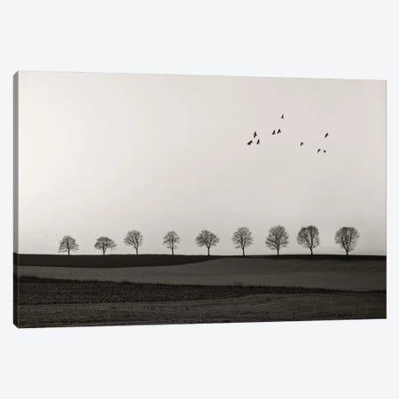 Winter Land Canvas Print #LEW114} by Lena Weisbek Art Print