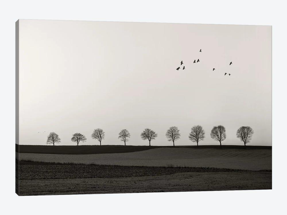 Winter Land by Lena Weisbek 1-piece Canvas Art