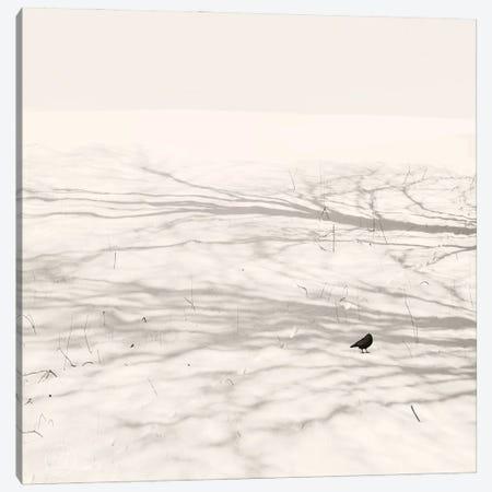 Dancing Bird Canvas Print #LEW116} by Lena Weisbek Canvas Art Print