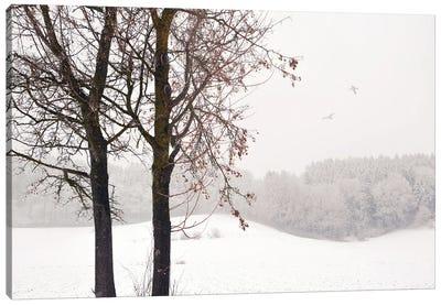 Winter Idyll Canvas Art Print
