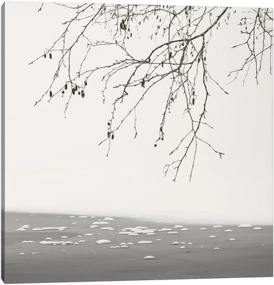 At The Frozen Lake Canvas Art Print