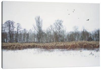 Country Romantic Canvas Art Print