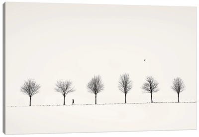 Winter Alley Canvas Art Print