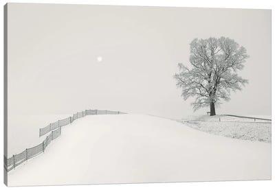 White Hillscape Canvas Art Print