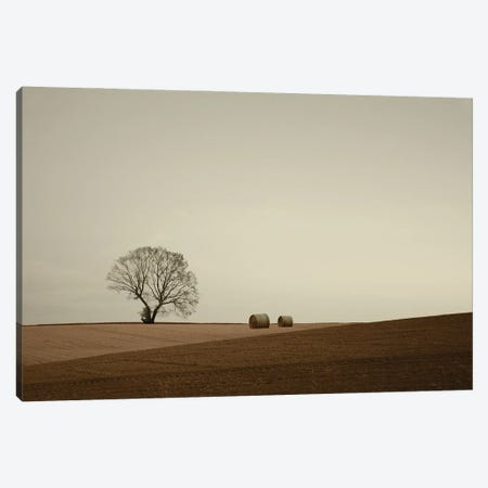 Ode To The Land Canvas Print #LEW142} by Lena Weisbek Canvas Print